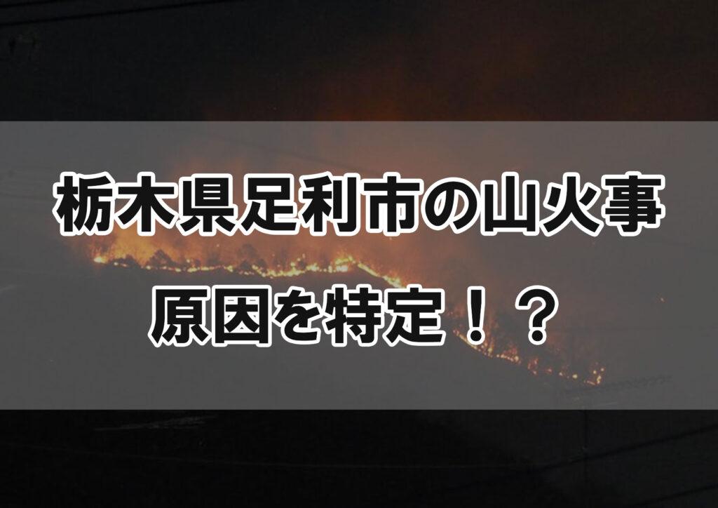 原因 火事 足利 山